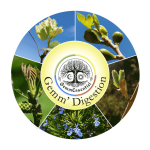 complex_digestion_web_transparent_c