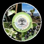 complex_pulmonaire_web_transparent_c